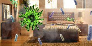 vi khuẩn trong nhà