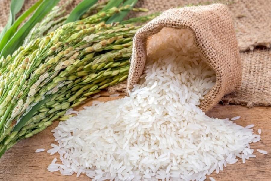 gạo tẻ