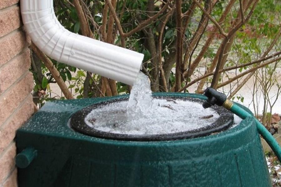 tận dụng nước mưa