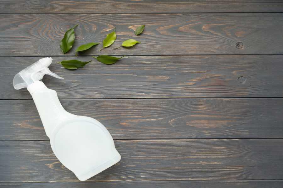 Tẩy keo dính chuột bằng nước lau sàn hữu cơ
