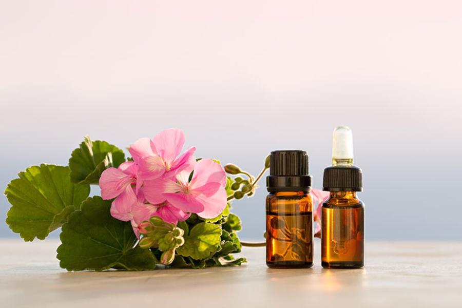 tinh dầu từ hoa là cách trị ve chó