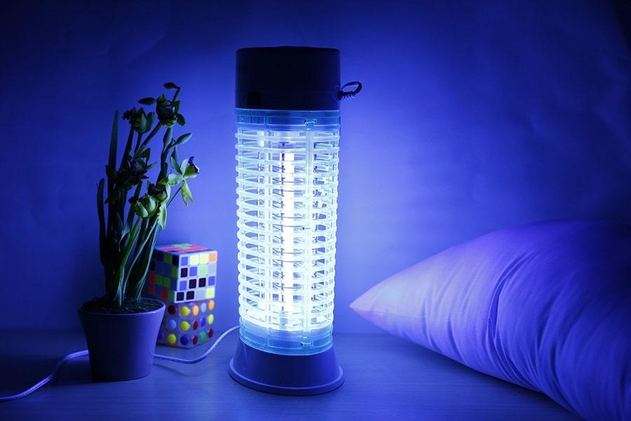 tắt hết đèn khi sử dụng đèn bắt muỗi