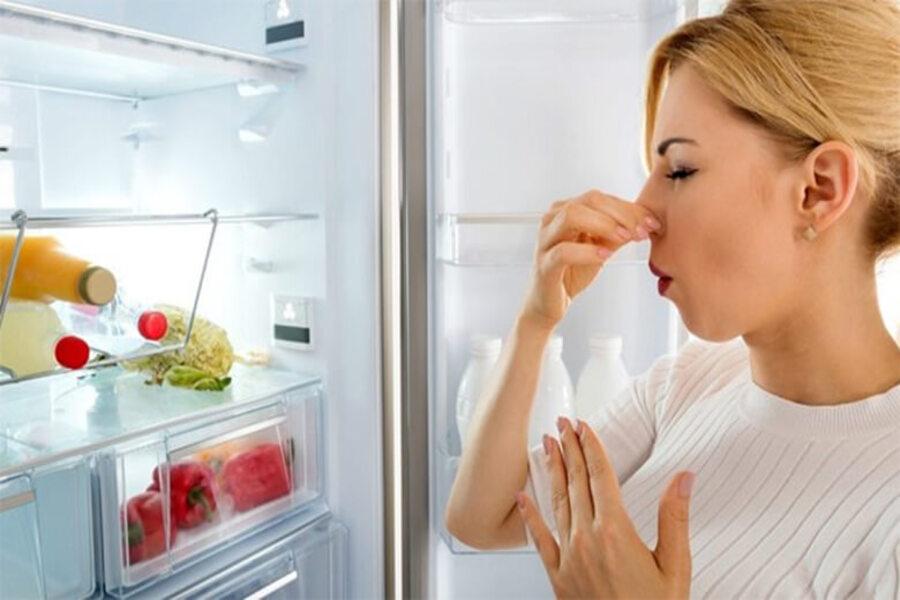 ngắt điện tủ lạnh gây ra vi khuẩn