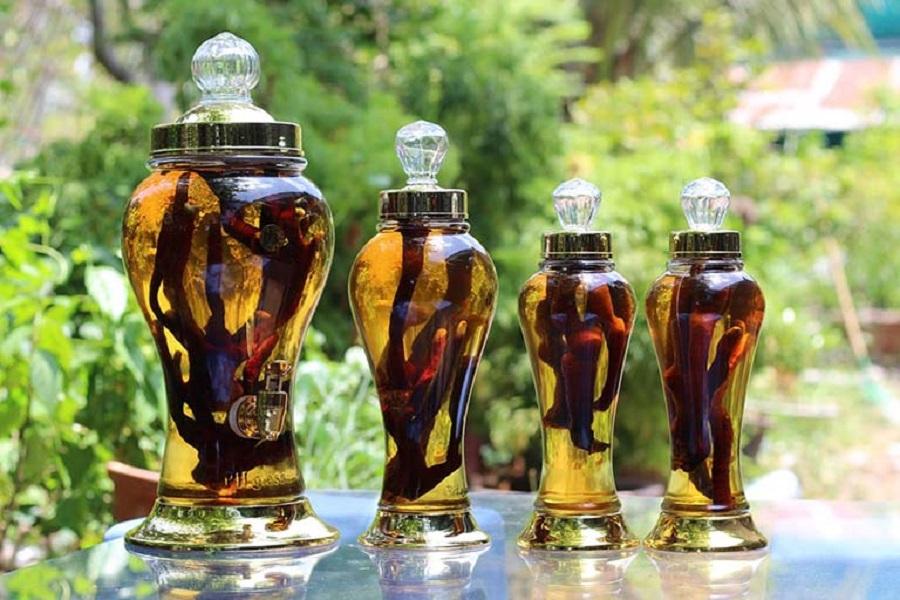 Dùng nguyên liệu có sẵn trong tự nhiên để ngâm rượu chữa bệnh người già đau lưng hiệu quả