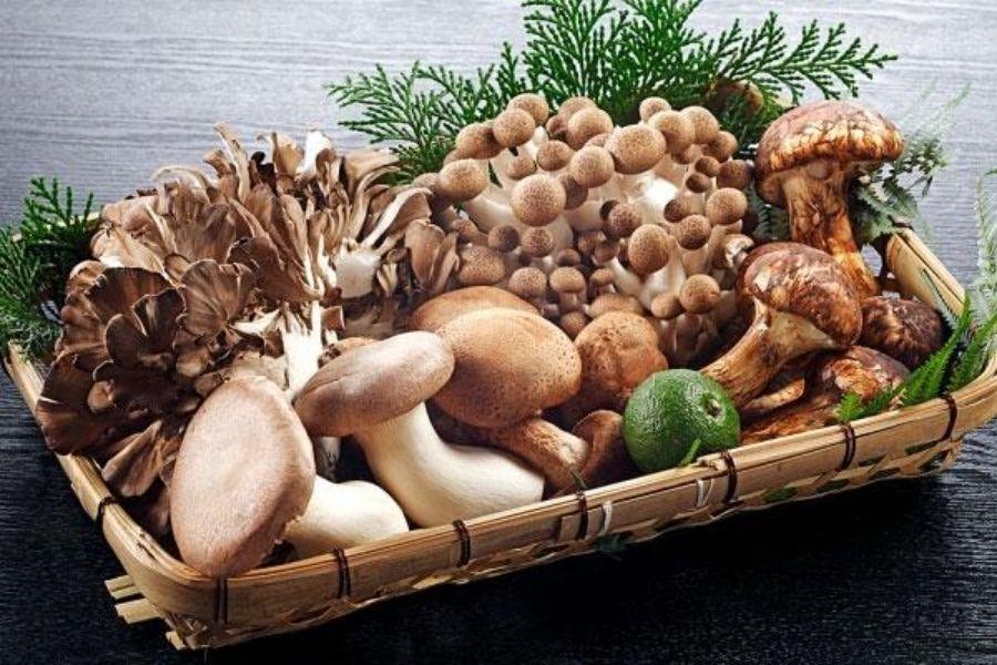 giỏ đựng các loại nấm tốt cho sức khoẻ