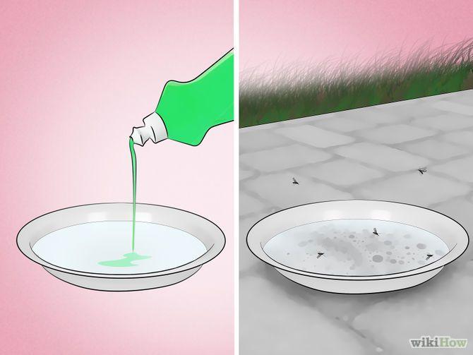 Đuổi muỗi bằng nước rửa chén