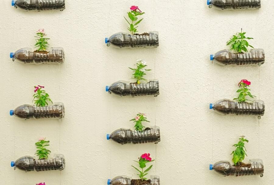 tái chế chai nhựa để trồng cây