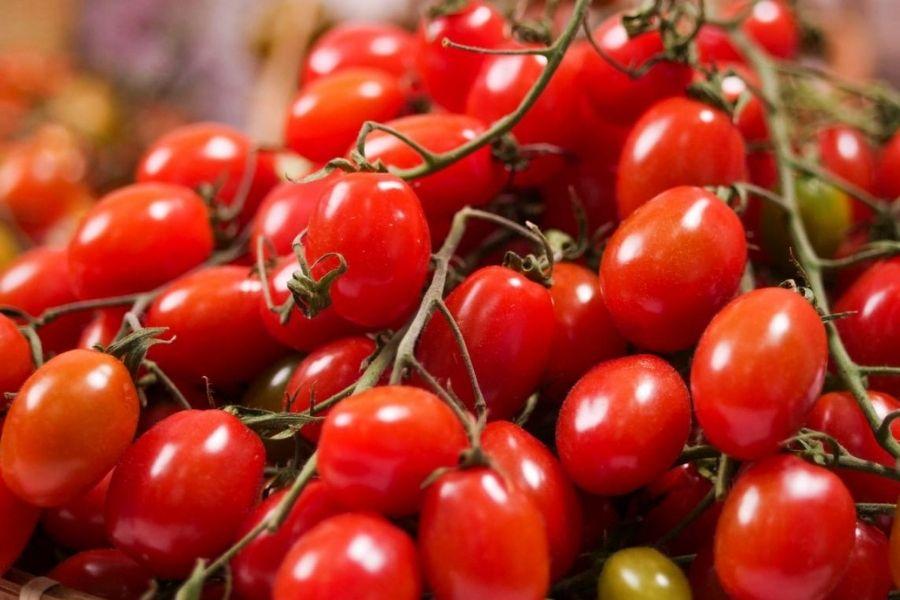 cách chọn cà chua cherry ngon ngọt cho chị em nội trợ