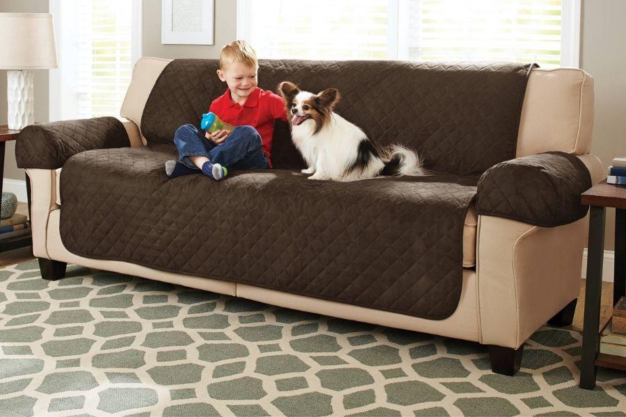 bọc nệm ghế sofa giúp bảo vệ khỏi thú cưng