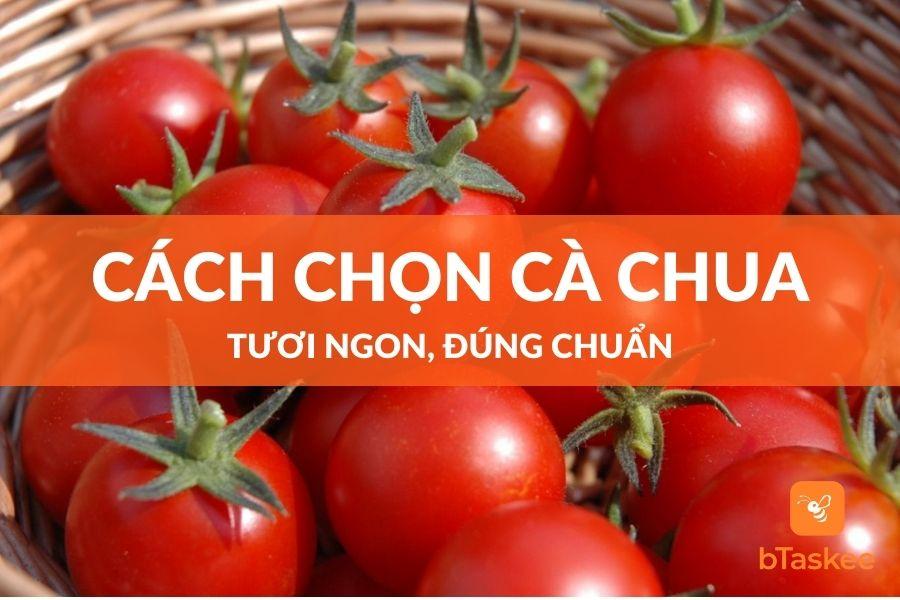 cách chon cà chua tuoi ngon