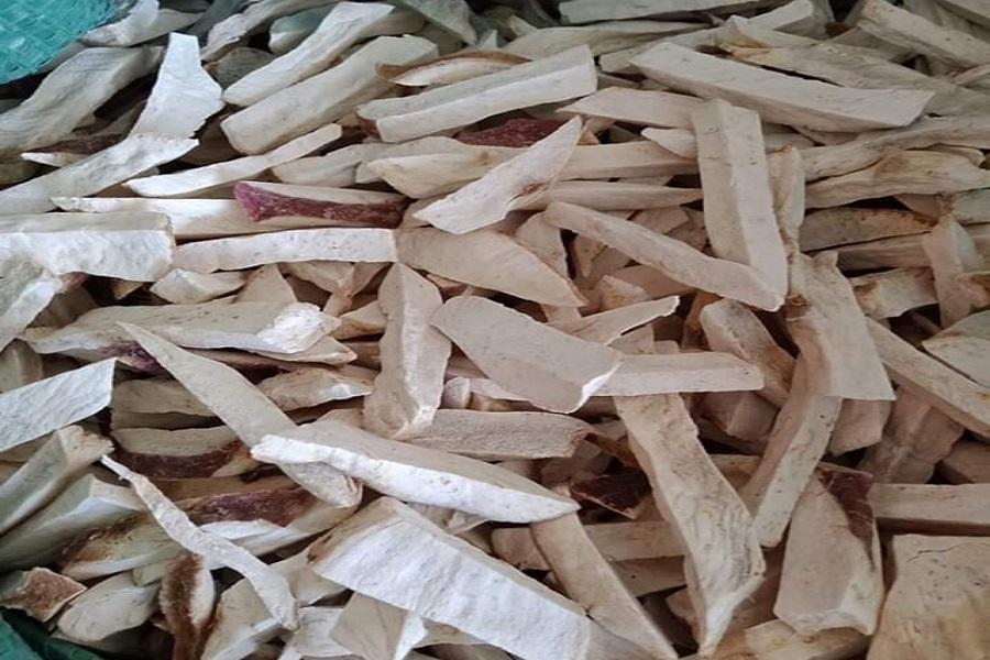 bảo quản khoai lang bằng cách cắt nhỏ phơi khô