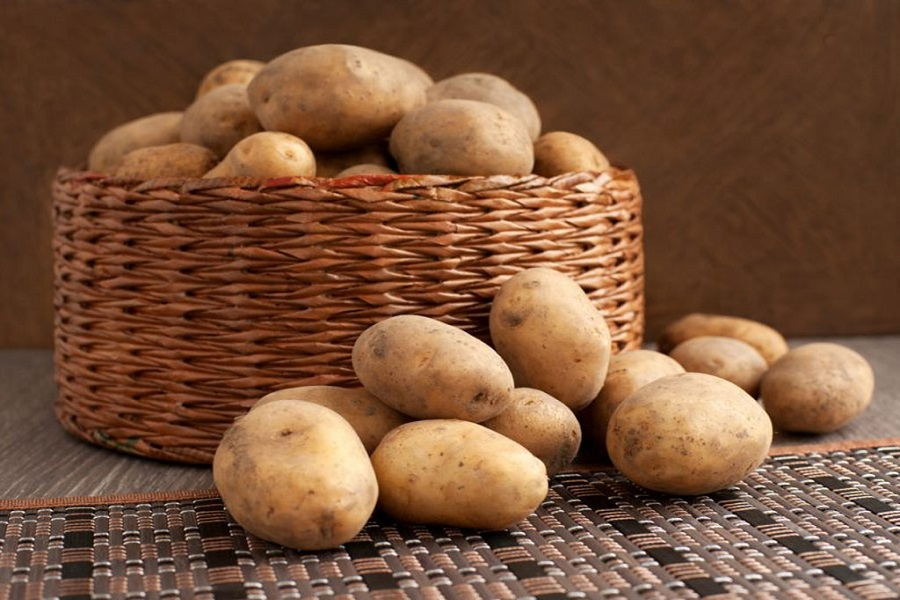 Chọn khoai tây còn nguyên vẹn để bảo quản