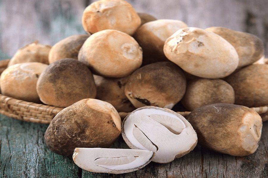 Nấm rơm dạng búp, bảo quản nấm rơm trong tủ lạnh để tươi lâu