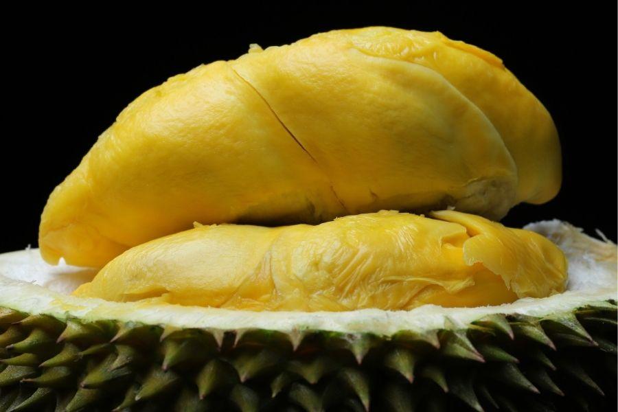 Quả sầu riêng có múi to, dày cơm, óng vàng.