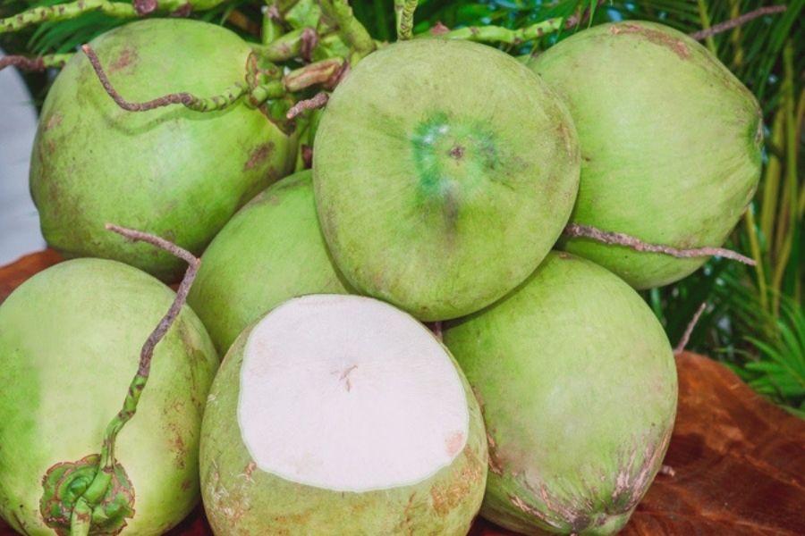 mua dừa xiêm nguyên chùm
