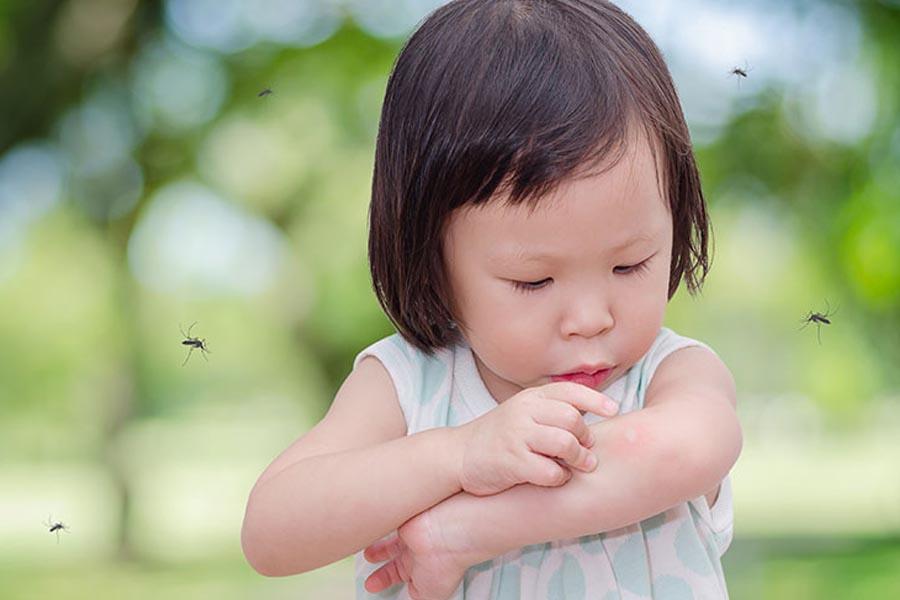 Trẻ bị sốt xuất huyết thường do vi rút của muỗi mang lại