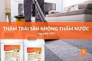 hóa chất giặt thảm trải sàn